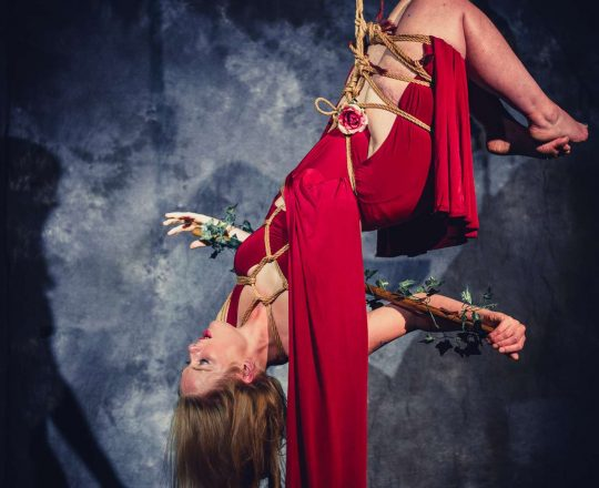 Performing 'Bloom' with Spring Tide at Prague Shibari Festival 2018. Woman in red dress is suspended upside down. Photographer: Zor Neurobashing